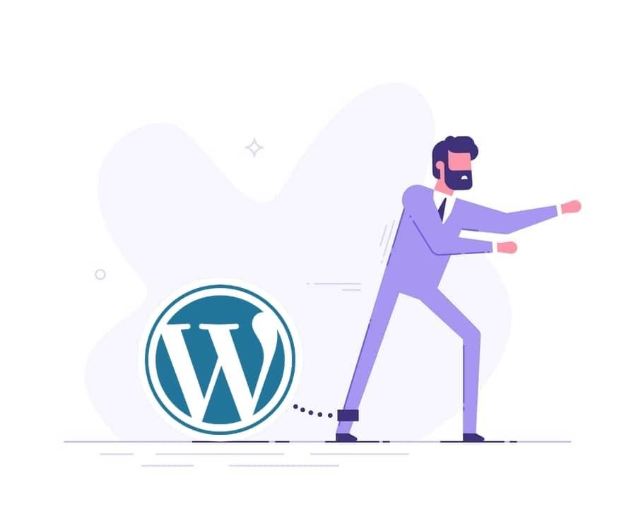 unlimited wordpress fixes